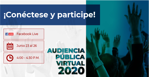 Audiencia Pública Virtual Fogafín 2020